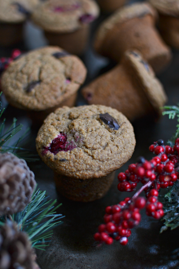 chocolate-cranberry-muffins-2