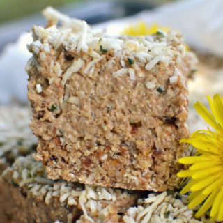Lemon Hemp Protein Bars