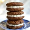 The Perfect Soft & Chewy Vegan Gingersnaps